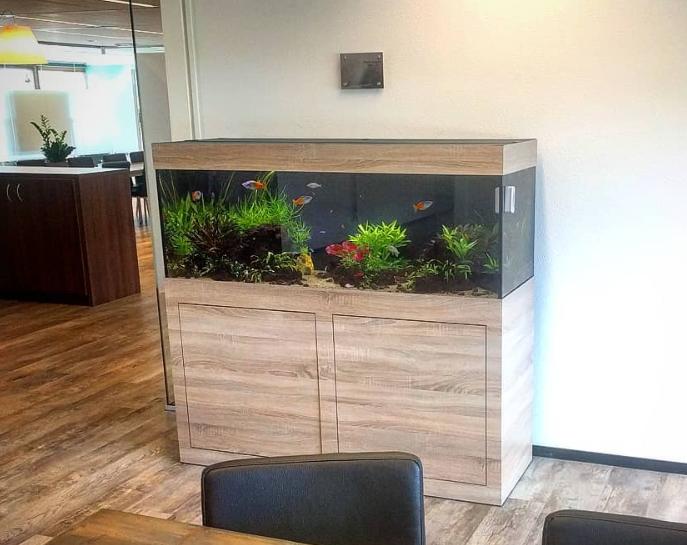 Portfolio Indoor Nature Design
